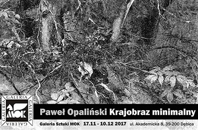 "The exhibition ""Minimal Landscape"" by Dr. Paweł Opaliński"