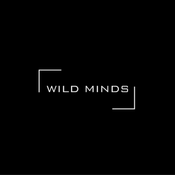 Digital marketing agency - Wild Minds